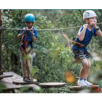 丛林拓展 儿童丛林穿越找遵义迪巧游乐 设计生产安装