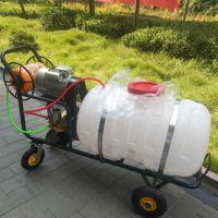 植保机械 新款自走式汽油喷雾器 园林汽油拉管式打药机 厂家直营 没有中间商