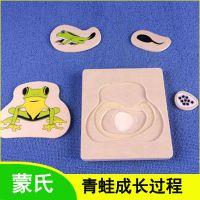 蒙氏教具 动物生长木制拼图 青蛙成长过程 慧乐早教 儿童益智玩具