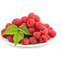 树莓果实营养丰富,咋吃都好吃