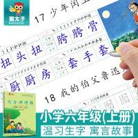 猫太子小学生***新同步练字贴批发 六年级上册课课练凹槽儿童练字