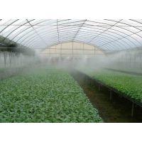 种植大棚喷雾加湿设备