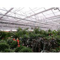 玻璃温室花房的生产厂家