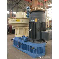 新型环保燃料加工设备 木粉颗粒机制造厂家价格