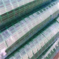 绿色铁丝网 涂塑电焊网 钢丝围栏网