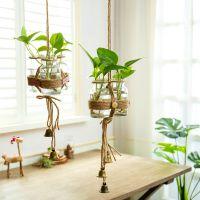 小清新透明玻璃水培花瓶墙上装饰品客厅挂件餐厅墙面墙壁花盆吊饰
