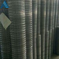 养貂电焊网 养殖电焊网