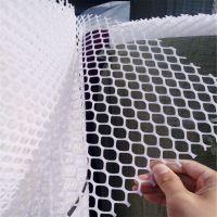 塑料养殖网 垫子塑料平网 雏鸡踩踏网