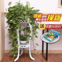 放花盆的架子铁艺多层花架绿萝吊兰阳台架子地面客厅室内铁架客厅