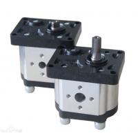 欧美机电工控BREVINI 齿轮泵 OT PS300 7067D上海祥树殷工优质供应