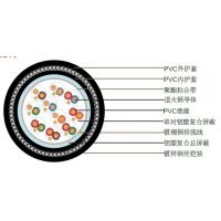 上海特润供应BS5308第二部分2类PVC绝缘+单对屏蔽+总屏蔽+铠装+PVC护套