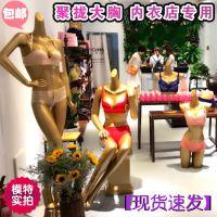 内衣店专用聚拢胸型模特道具女半身金色大胸全身橱窗展示包邮