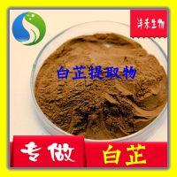白芷提取物  厂家现货供应 10:1  天然白芷粉  化妆品保健原料
