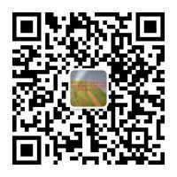 安平县旭泰丝网制品有限公司