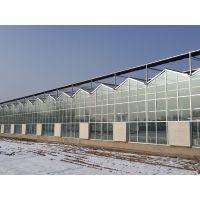 智能玻璃温室 大棚的建设厂家 盛鸿制造