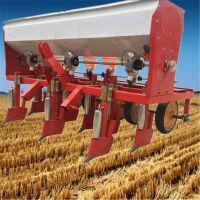 免间苗种子精播机-手推式谷子播种机-升级水稻直播机