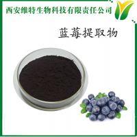 维特生物(图)-蓝莓提取物水溶性-蓝莓提取物