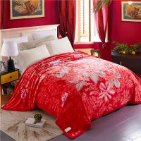 巴黎绒云毯促销赠品婚庆礼品床单毛毯盖毯