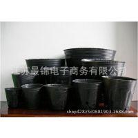 厂家黑色塑料营养钵批发 育苗盆育秧盆营养杯农用营养钵 规格齐全