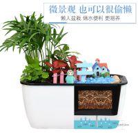 绿植微景观组合盆栽DIY手工装饰摆件办公桌面水培植物创意生态瓶