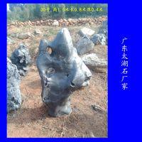 英德奇石产地直销 太湖石奇石图片 广东英德假山石基地