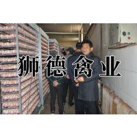 贵州黔东州鸡苗出售 北流鸭苗批发报价 江汉土鸡苗种蛋