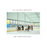 冰球场围栏定制 冰球场围栏公司 冰球场围栏价格