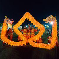 中国民间工艺品 庙会商演舞龙舞狮培训班道具 黄金灯光龙国标三号