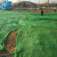 环保绿色盖土网,工地覆盖网