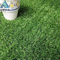 景观草人造草坪 人造塑料假草皮