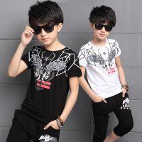 童装夏韩版男童透气休闲套装 中大儿童运动二件套一件代发