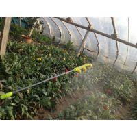 20L背负式农用八角电动喷雾器12v电动打药机农药喷雾机 山东临沂