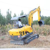 供应小型挖掘机哪家好