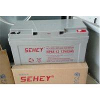 绍兴蓄电池供应商NP12150西力蓄电池