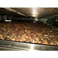 陕西油茶籽干燥系统多少钱一套