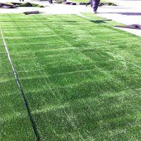 厂家销售假草评 仿真草坪分类 绿化草坪价格