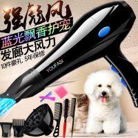 静音吹风机大功率宠物狗狗电吹风金毛泰迪猫咪大小型犬专用吹水机