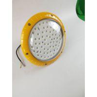 RLEEXL608-100W养殖场吊管式LED防爆照明灯