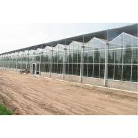 玻璃温室大棚骨架定制生产厂家可做外贸出口生意