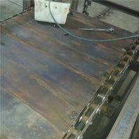 上海链板输送机专业生产 不锈钢链板输送机大理