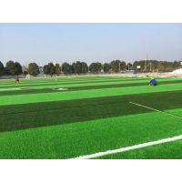 供应武汉理工大学人造草坪翻新 8200平人造草坪造价 幼儿园环保透气型塑胶跑道