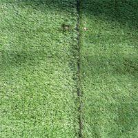 山西省阳泉市人造草坪厂家假草皮工程围挡幼儿园假草坪