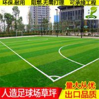 塑料草坪学校球场婚礼铺设地毯人造草皮绿化耐用