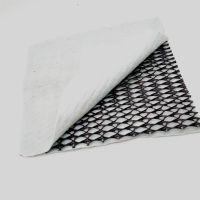 三维复合排水网专业生产中国标hdpe两布一网