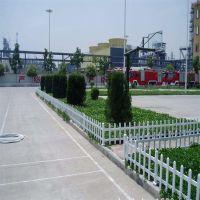 PVC草坪护栏厂家生产 园艺隔离栅栏 绿化隔离带围栏 花园围栏网