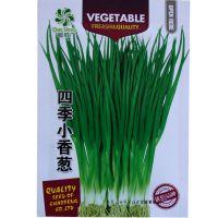 aa超胜四季小香葱种子葱种子 阳台盆栽蔬菜种子菜秋播香味浓厚
