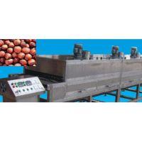 启东大枣红枣微波烘干机设备大枣红枣烘干设备的具体参数