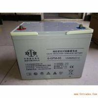 鞍山双登蓄电池6-GFM-6512V65AH价格