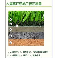 河北亿鑫体育设施工程有限公司供应人造仿真草坪 质保量优