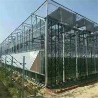 江门薄膜连栋大棚 生态餐厅 智能玻璃温室 花卉温室连栋大棚